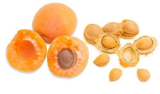 abrikozenpitten giftig