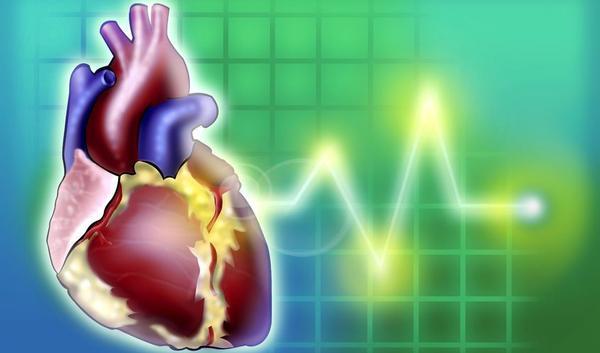 Verdubbeling aantal hartfalenpati nten tegen 2040 for Prognose hartfalen