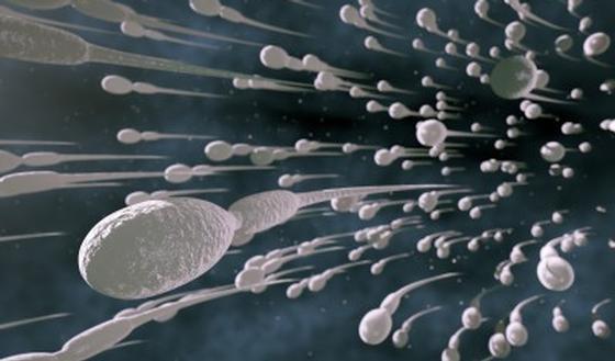 u-negrityanki-pizda-v-sperme