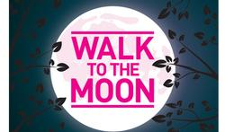 """Mons kleurt """"Pink"""" tijdens wandeltocht bij volle maan"""